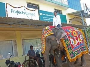 インド、プロジェクトアブロード、オフィス前の風景