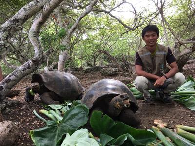 エクアドルで環境保護活動に貢献する日本人ボランティア