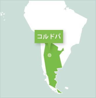 アルゼンチンのコルドバでのプロジェクトアブロードボランティア達
