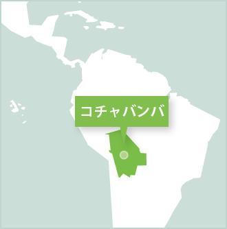 ボリビア、コチャバンバ、活動地でのプロジェクトアブロードボランティア