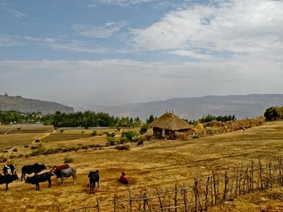 エチオピアの農家