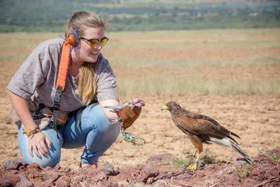 メキシコで鷹の保護に貢献するボランティアの様子