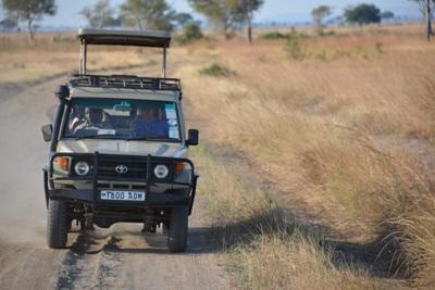 ケニアの国立公園でサファリ