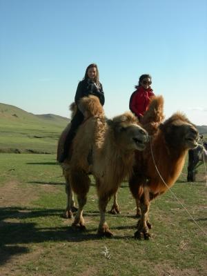 モンゴル、ラクダで旅するプロジェクトアブロードボランティア