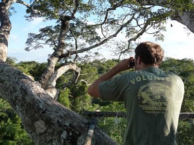 ペルー、野鳥を観察する環境保護ボランティア