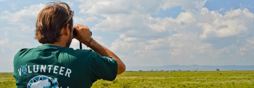 アフリカで環境保護の海外ボランティア