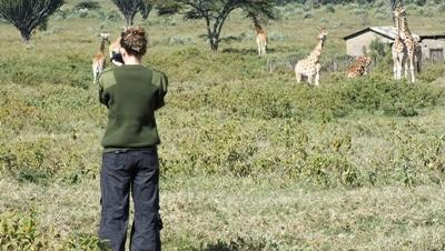 アフリカの野生動物を観察する環境保護ボランティア