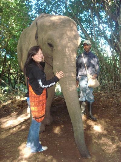 アフリカの獣医療の現場でインターンとして活動するインターン