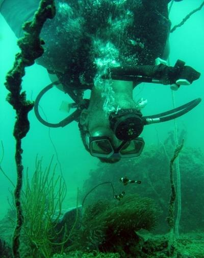 アジアの海中で海洋環境保護に携わるボランティア