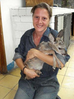 南米で活動する獣医ボランティア