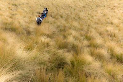 南米で海外ボランティア アルゼンチンでハイキングの冒険に出かけたボランティアたち