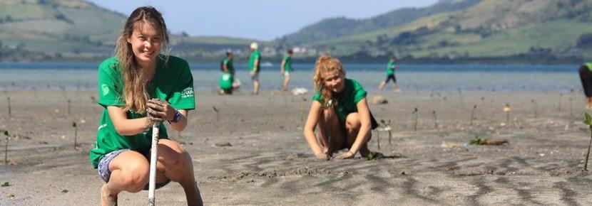 南太平洋でマングローブの植林活動に励む環境保護のボランティアたち