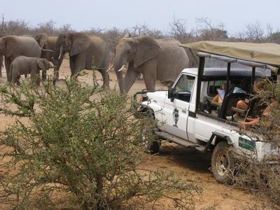 南アフリカとボツワナの国境沿いの自然保護区で、貴重な環境保護の海外ボランティア