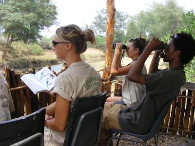 南アフリカ/ボツワナの自然保護区で、野鳥の調査中の高校生ボランティアたち