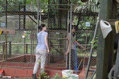 自然保護の海外国際協力 動物たちの檻のメンテナンスに励む学生ボランティア