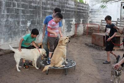 イヌとの触れ合いを喜びドッグセラピーを楽しむ子供たち