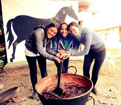 アルゼンチン、乗馬セラピーをするプロジェクトアブロードボランティア