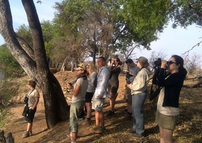 アフリカで環境保護のボランティア 水辺で野鳥観察をするボツワナの環境保護ボランティアたち