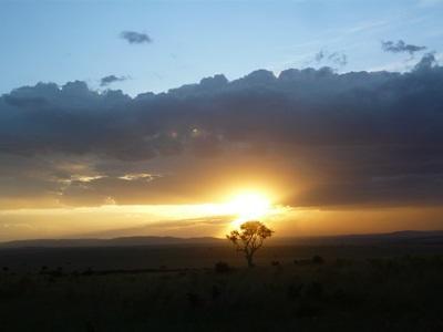 ケニアの地平線に沈みゆく夕日とサバンナ