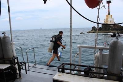 ダイビングをするタイの環境保護ボランティア