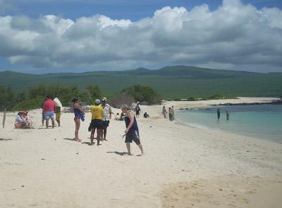 エクアドル、ガラパゴス諸島、環境保護プロジェクトで海岸清掃をするプロジェクトアブロードボランティア
