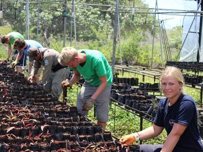 エクアドルで環境保護の国際ボランティア 植樹活動