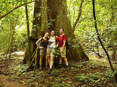 コスタリカ、環境保護プロジェクト、ギャップイヤーボランティア巨木の前でポーズをとるプロジェクトアブロードボランティア