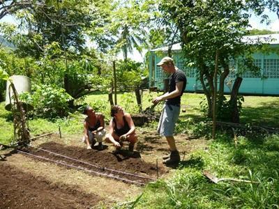 コスタリカ、環境保護プロジェクト、活動中のプロジェクトアブロードボランティア