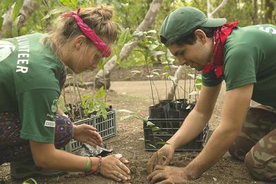 南米コスタリカで海外ボランティア 植林に貢献する環境保護ボランティア