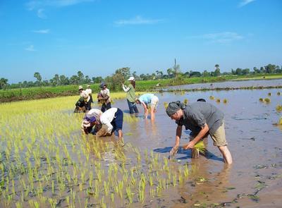カンボジアで国際ボランティア 異文化体験クメールプロジェクトに参加するシニアボランティアたち