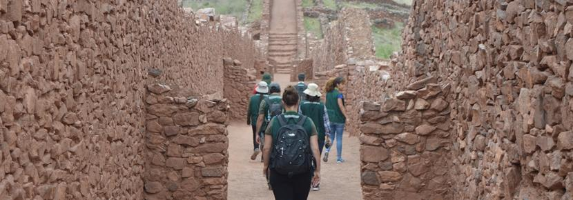 高校生の短期海外ボランティアプログラム 考古学