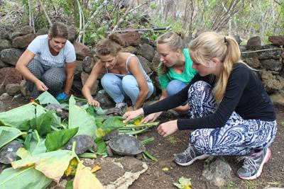 Young High School Special volunteers provide food for wildlife in Ecuador