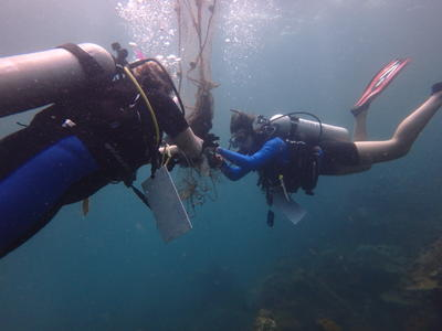 高校生の海外ボランティア カンボジアの海で海洋保護に貢献する高校生ボランティアたち