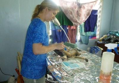 Professional volunteer working at clinic in Samoa