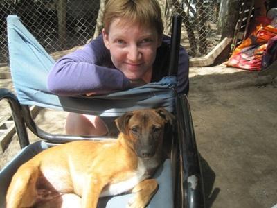 アルゼンチン、動物ケアプロジェクト、痩せた犬の世話をするプロジェクトアブロードボランティア