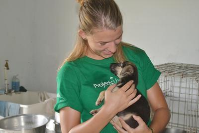 ジャマイカで動物保護に貢献する海外ボランティア