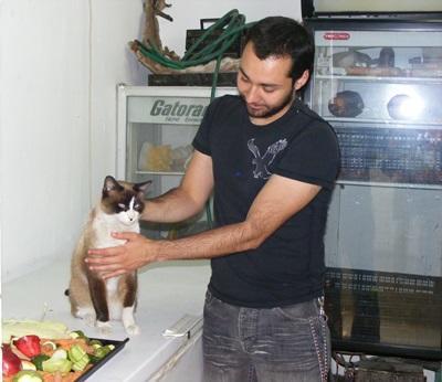 メキシコ、獣医療プロジェクト、猫の世話をするインターン