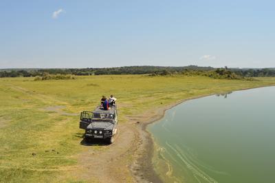 アフリカのケニアのサバンナで冒険しよう